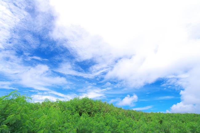 千葉県流山市,諦めない力をつける学習塾,講師プロフィール